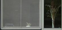 Moustiquaire de fenêtre contre les mouches
