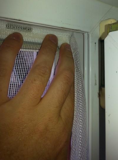 Poser la moustiquaire anti mouche sur le celcro